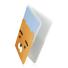 투명여권지갑 라이언